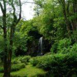 Kilfane Glen & Waterfall Kilkenny