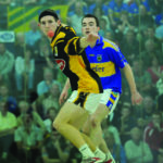 M. Donnelly 60x30 Handball All-Ireland Finals
