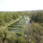 Goatsbridge-trout-Farm