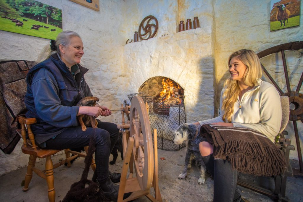 Zwartbles Ireland Kilkenny