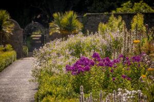 Woodstock Gardens and Arboretum (6)