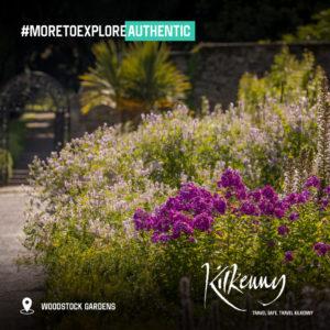 Kilkenny Authentic Woodstock Gardens