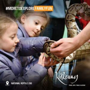 Morefamilyfun Reptilezoo 01