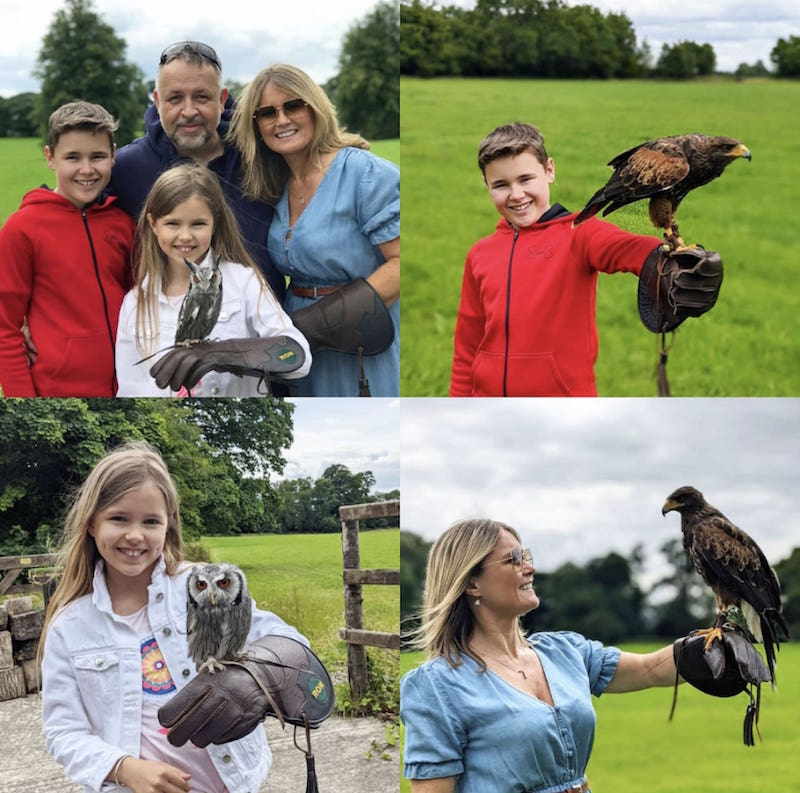 The Travel Expert Kilkenny Hawkeye School Of Falconry At Lyrath Estate