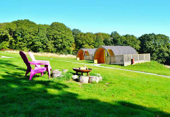 Butterfly Glamping